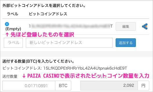 paiza-bit2-4